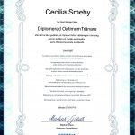 Diplom Optimum